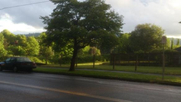 Portland Green